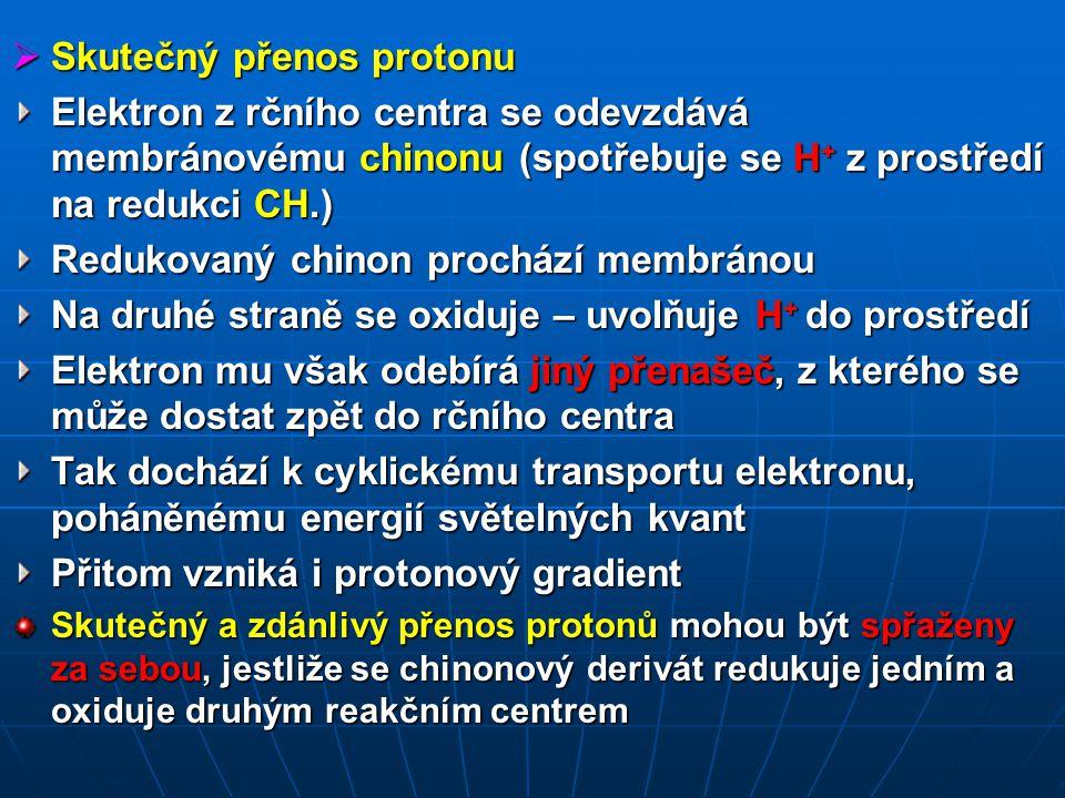 Skutečný přenos protonu