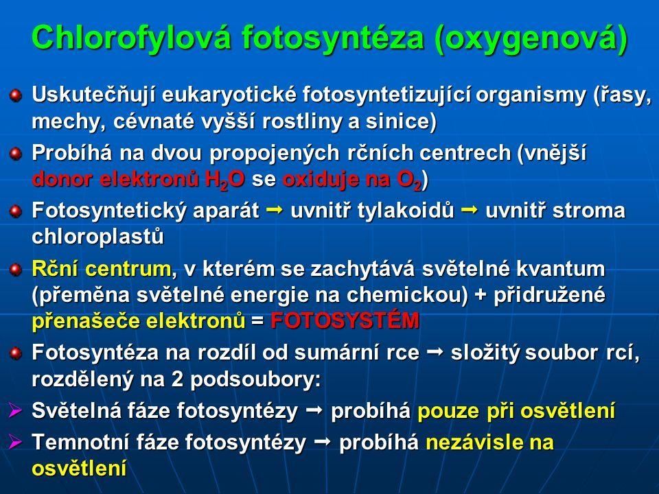 Chlorofylová fotosyntéza (oxygenová)