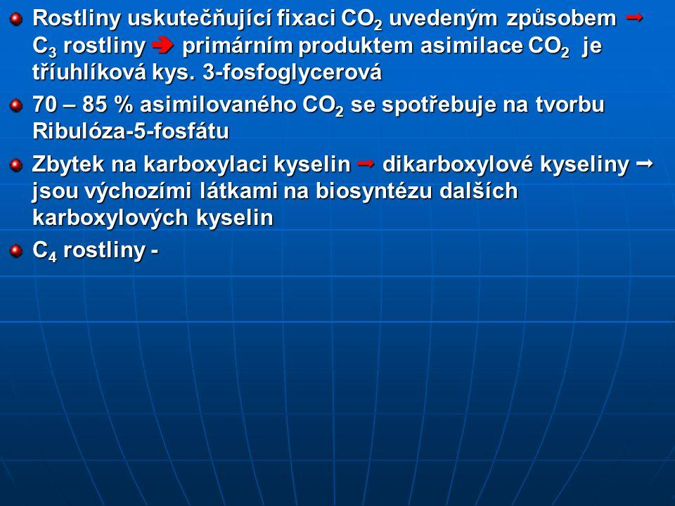 Rostliny uskutečňující fixaci CO2 uvedeným způsobem  C3 rostliny  primárním produktem asimilace CO2 je tříuhlíková kys. 3-fosfoglycerová