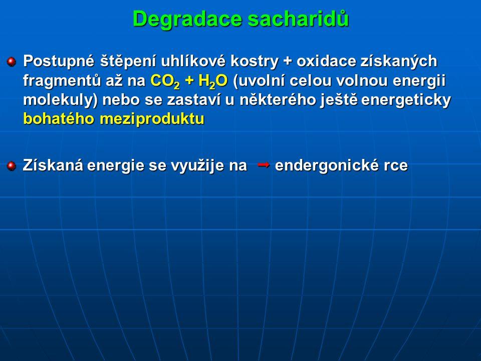 Degradace sacharidů