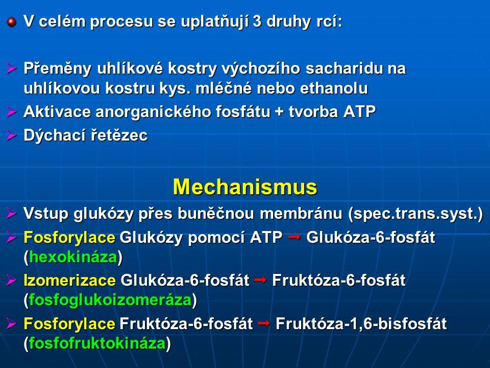 Mechanismus V celém procesu se uplatňují 3 druhy rcí: