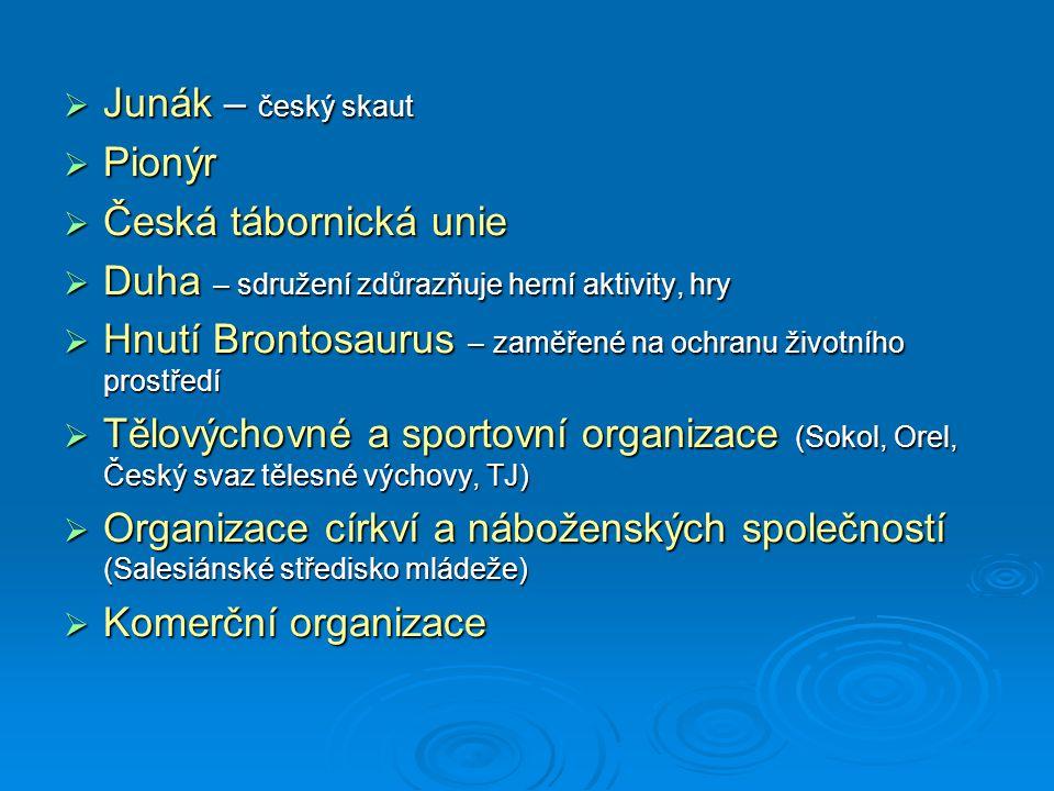 Junák – český skaut Pionýr. Česká tábornická unie. Duha – sdružení zdůrazňuje herní aktivity, hry.