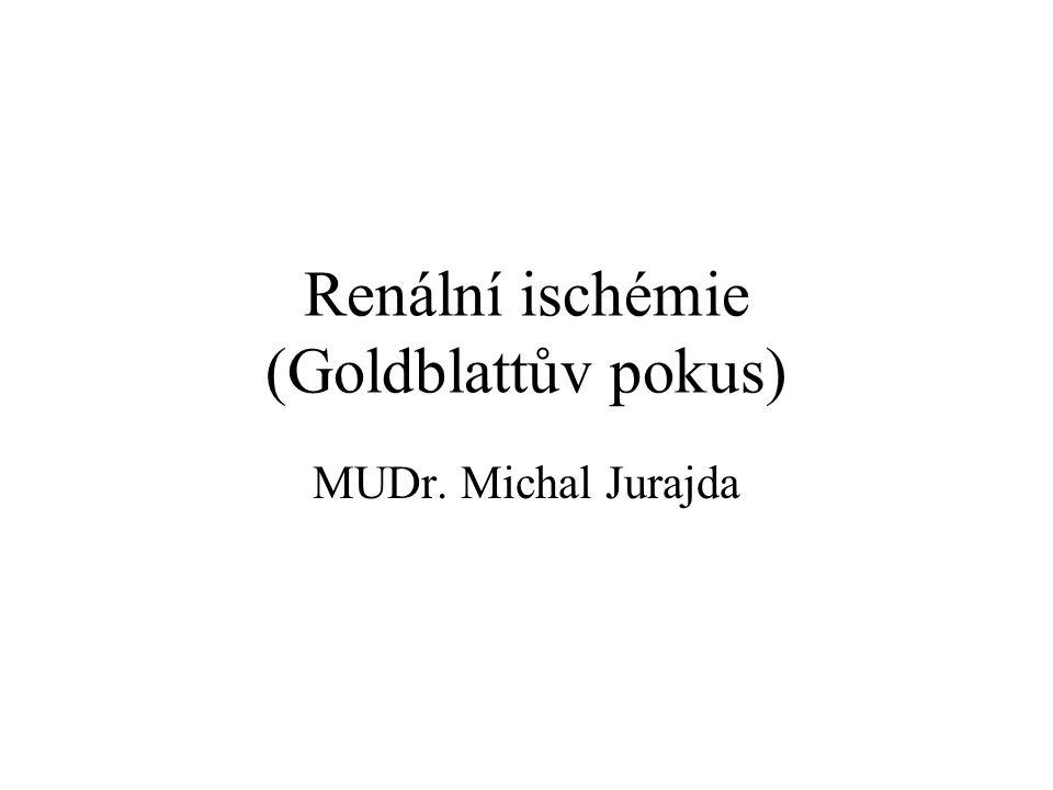 Renální ischémie (Goldblattův pokus)