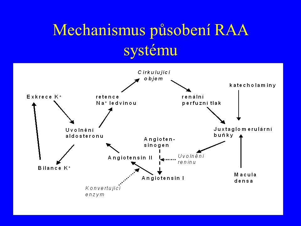 Mechanismus působení RAA systému