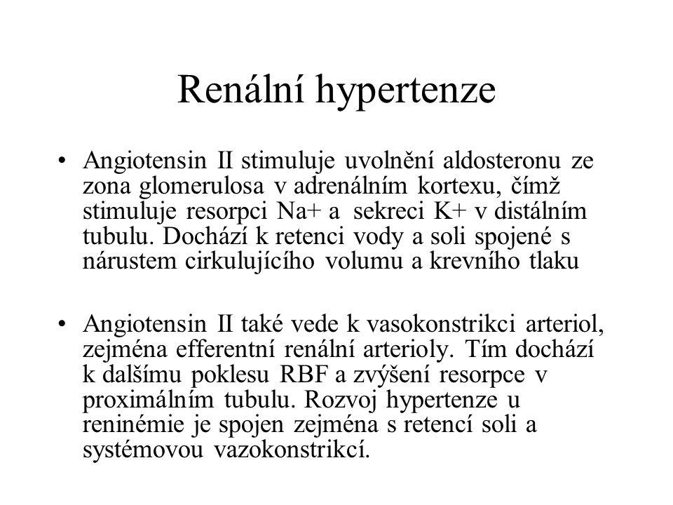 Renální hypertenze