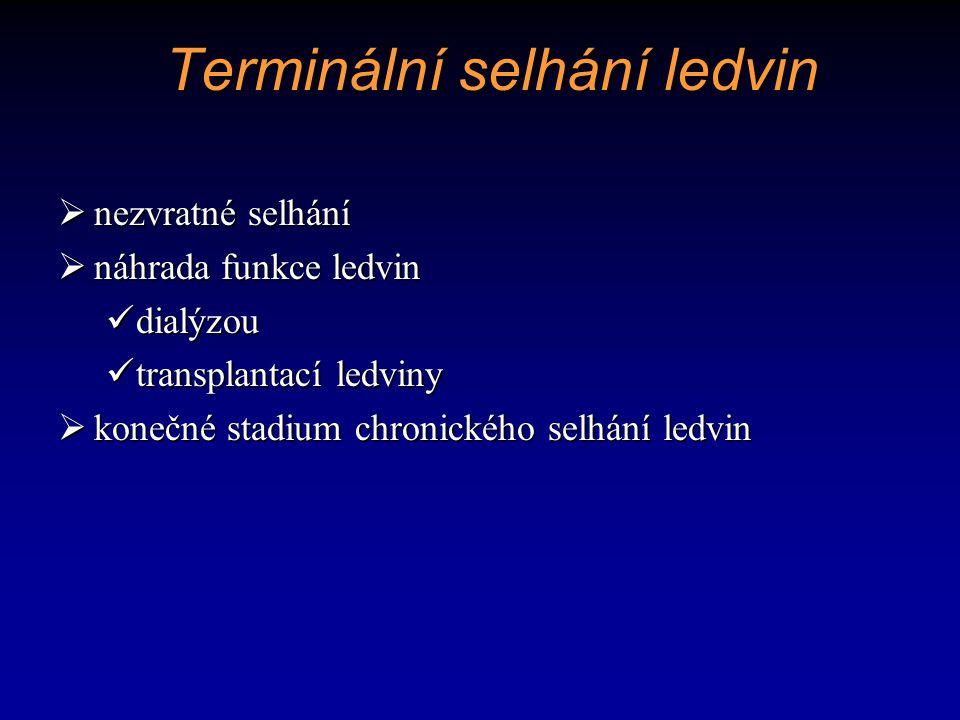 Terminální selhání ledvin