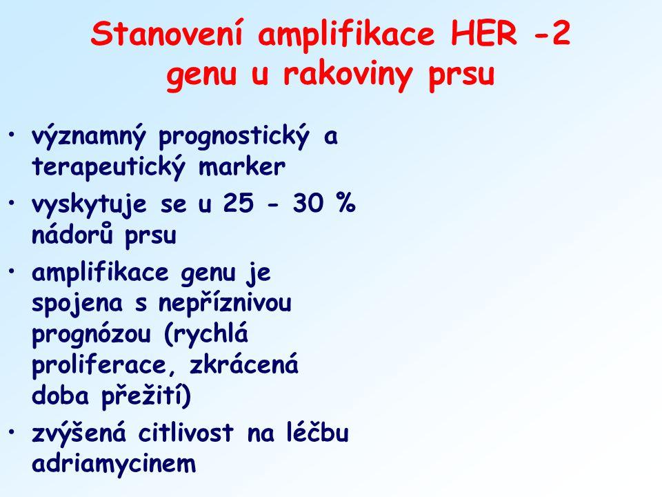 Stanovení amplifikace HER -2 genu u rakoviny prsu
