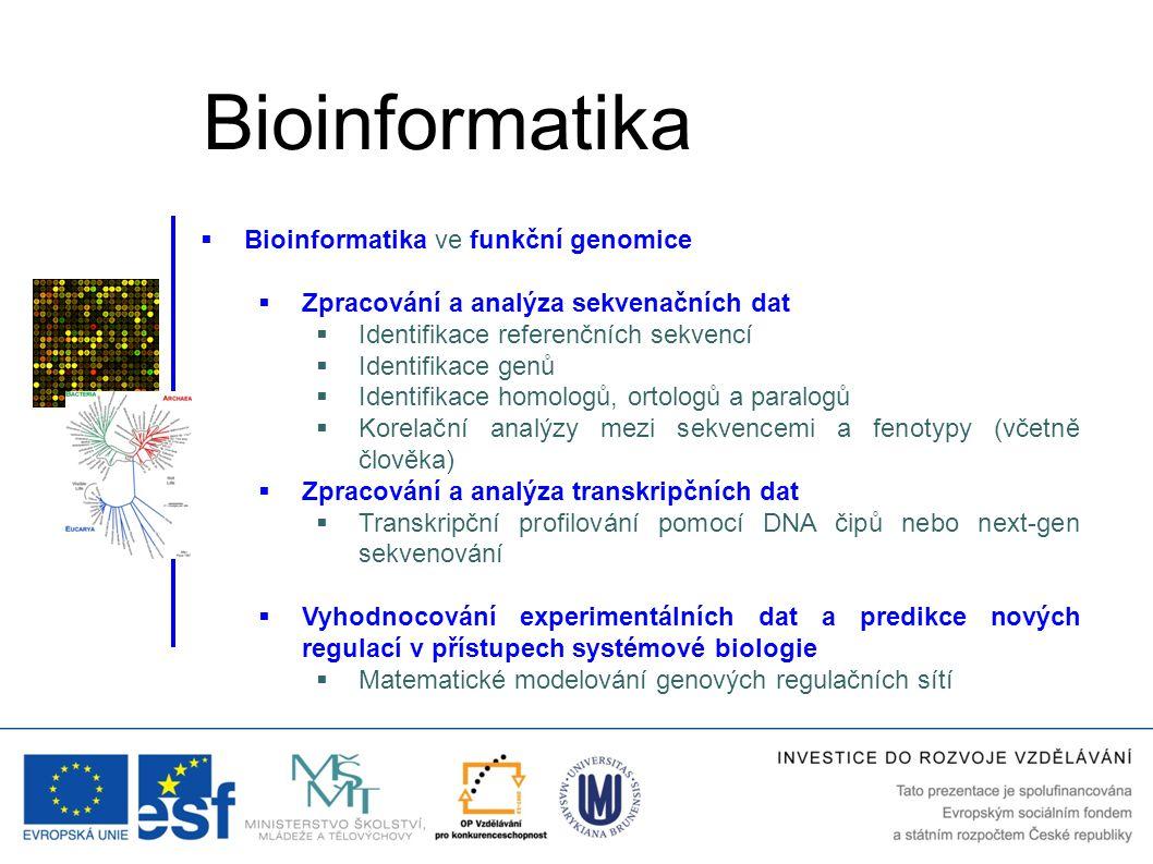 Bioinformatika Bioinformatika ve funkční genomice