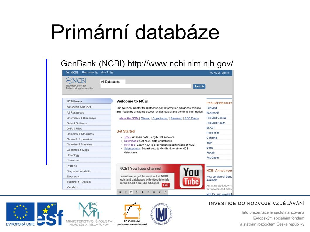 Primární databáze GenBank (NCBI) http://www.ncbi.nlm.nih.gov/