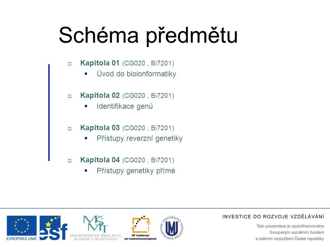 Schéma předmětu Kapitola 01 (CG020 , Bi7201) Úvod do bioionformatiky