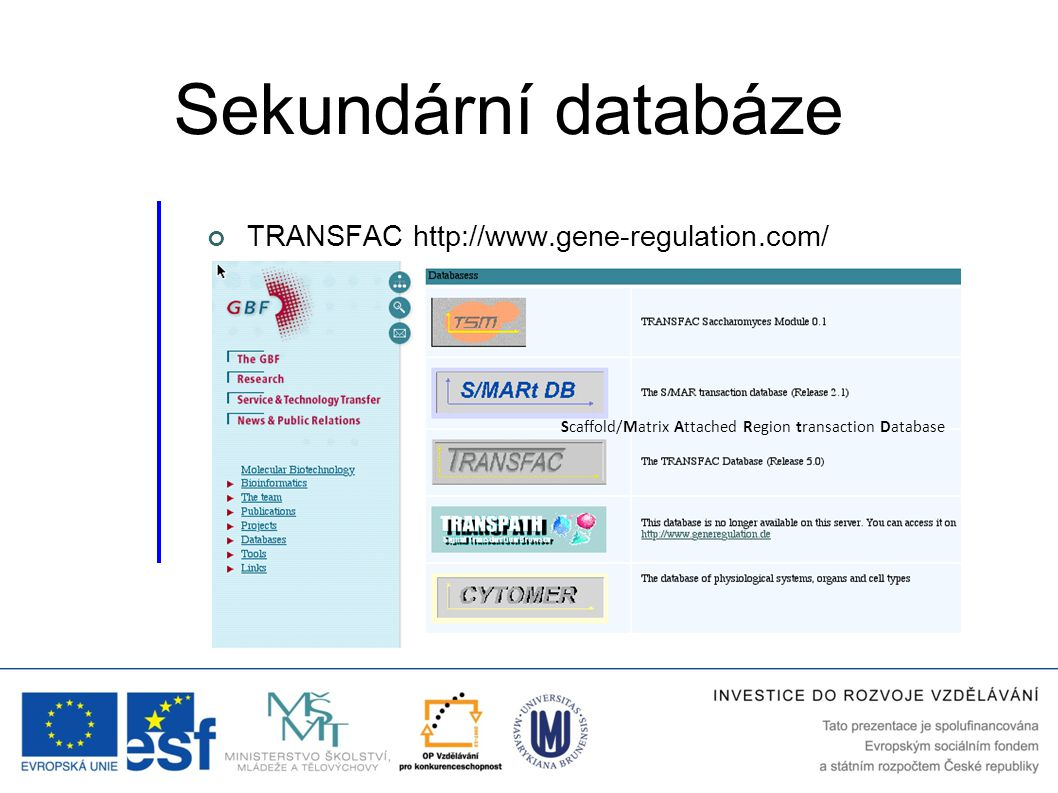 Sekundární databáze TRANSFAC http://www.gene-regulation.com/