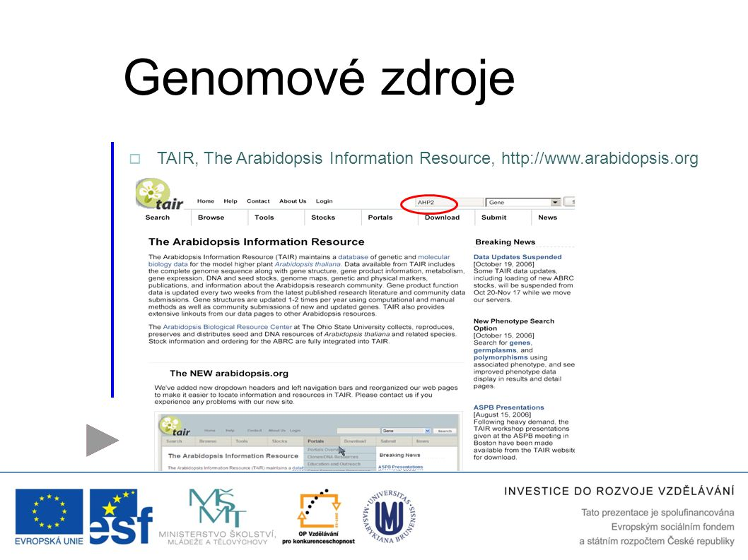 Genomové zdroje TAIR, The Arabidopsis Information Resource, http://www.arabidopsis.org