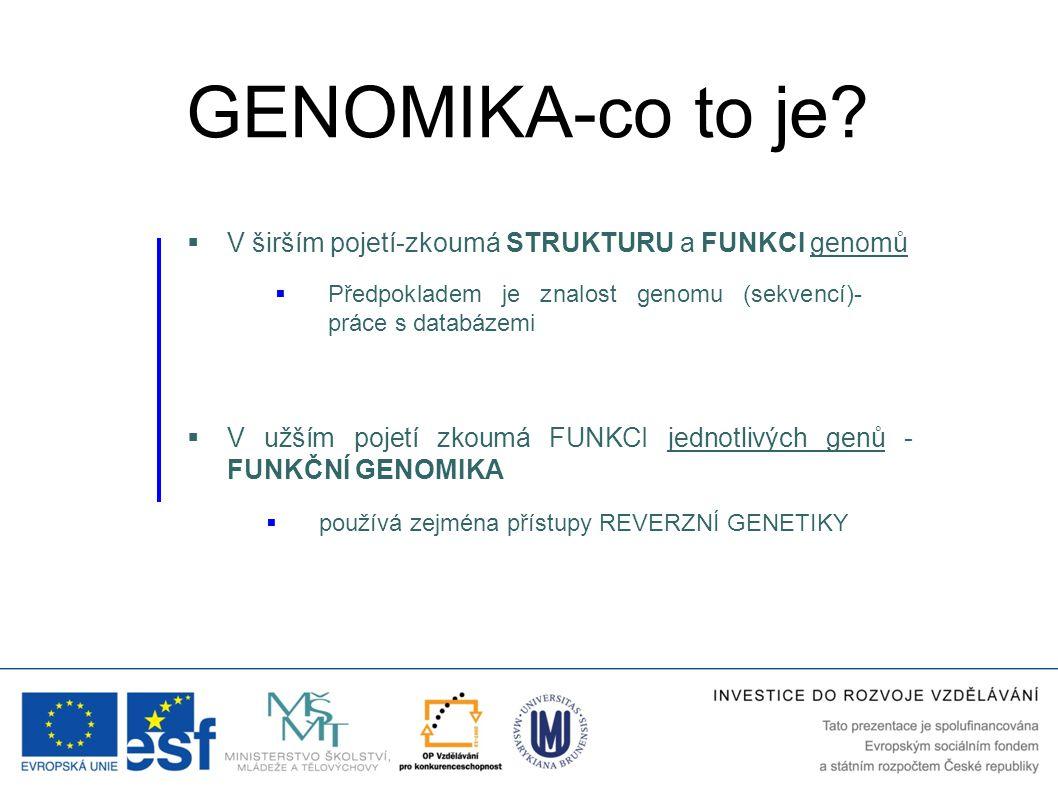 GENOMIKA-co to je V širším pojetí-zkoumá STRUKTURU a FUNKCI genomů
