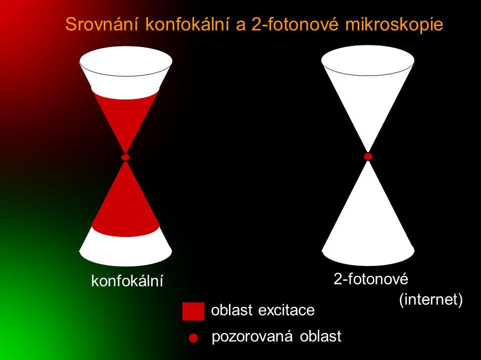 Srovnání konfokální a 2-fotonové mikroskopie