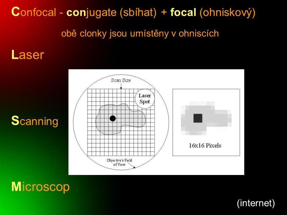 Confocal - conjugate (sbíhat) + focal (ohniskový) Laser