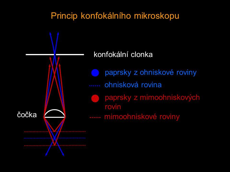 Princip konfokálního mikroskopu