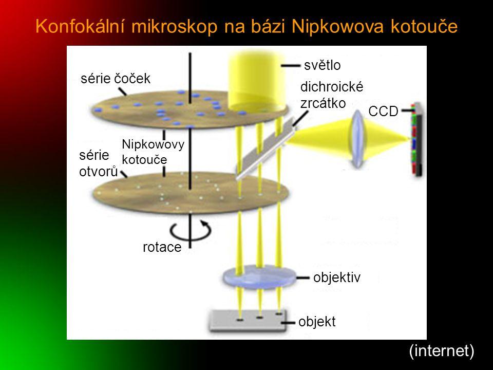 Konfokální mikroskop na bázi Nipkowova kotouče