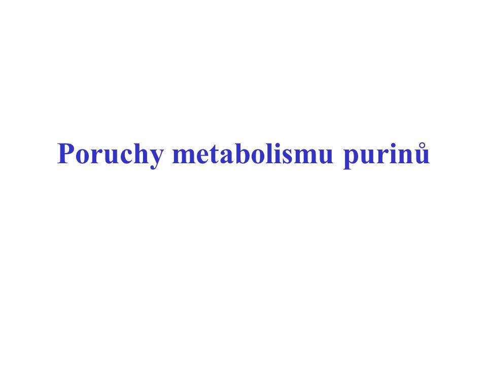 Poruchy metabolismu purinů