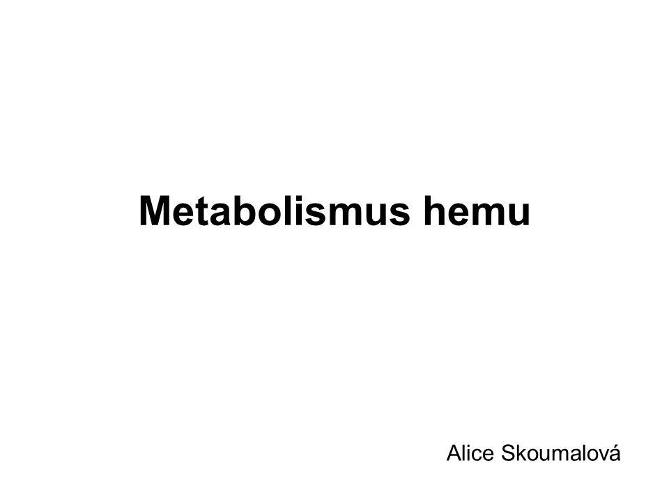 Metabolismus hemu Alice Skoumalová
