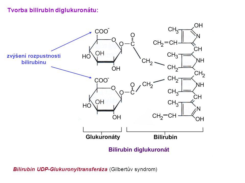 zvýšení rozpustnosti bilirubinu