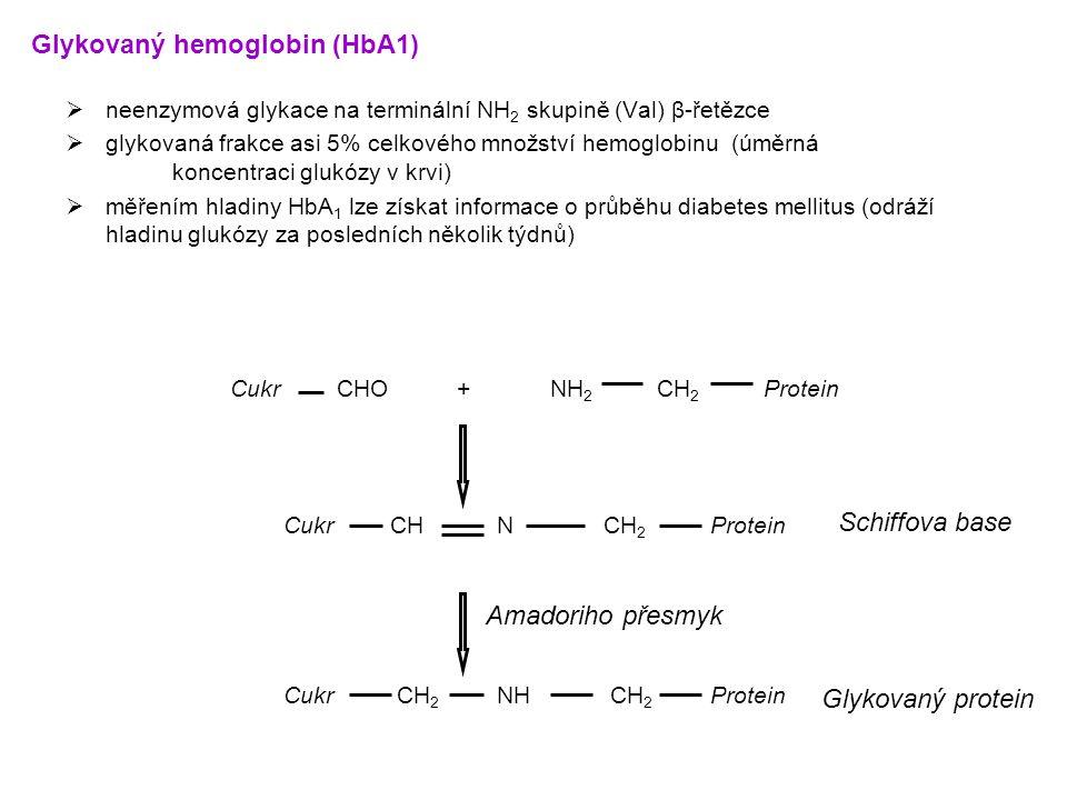 Glykovaný hemoglobin (HbA1)