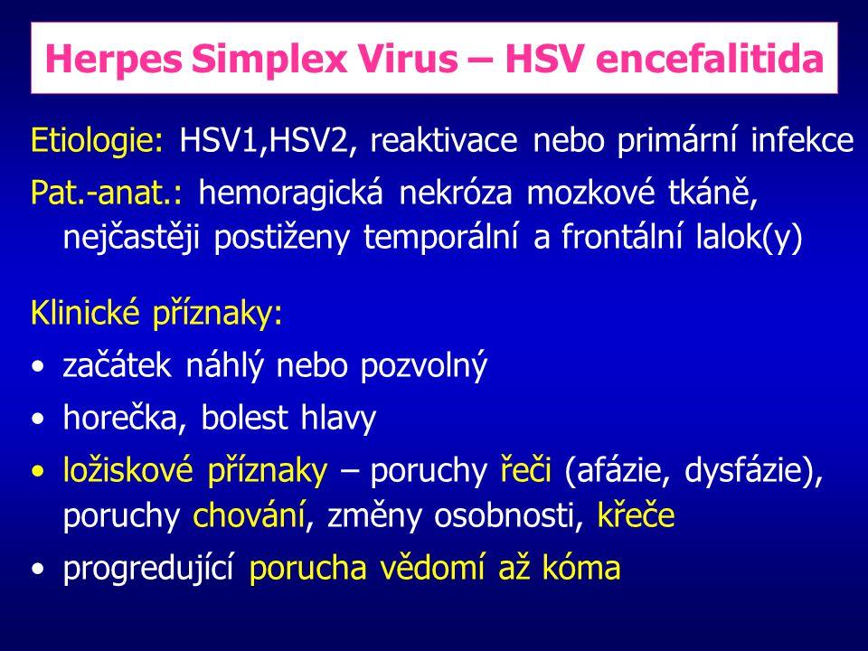 Herpes Simplex Virus – HSV encefalitida