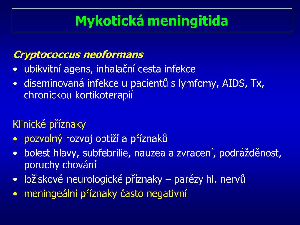 Mykotická meningitida