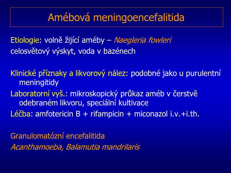 Amébová meningoencefalitida