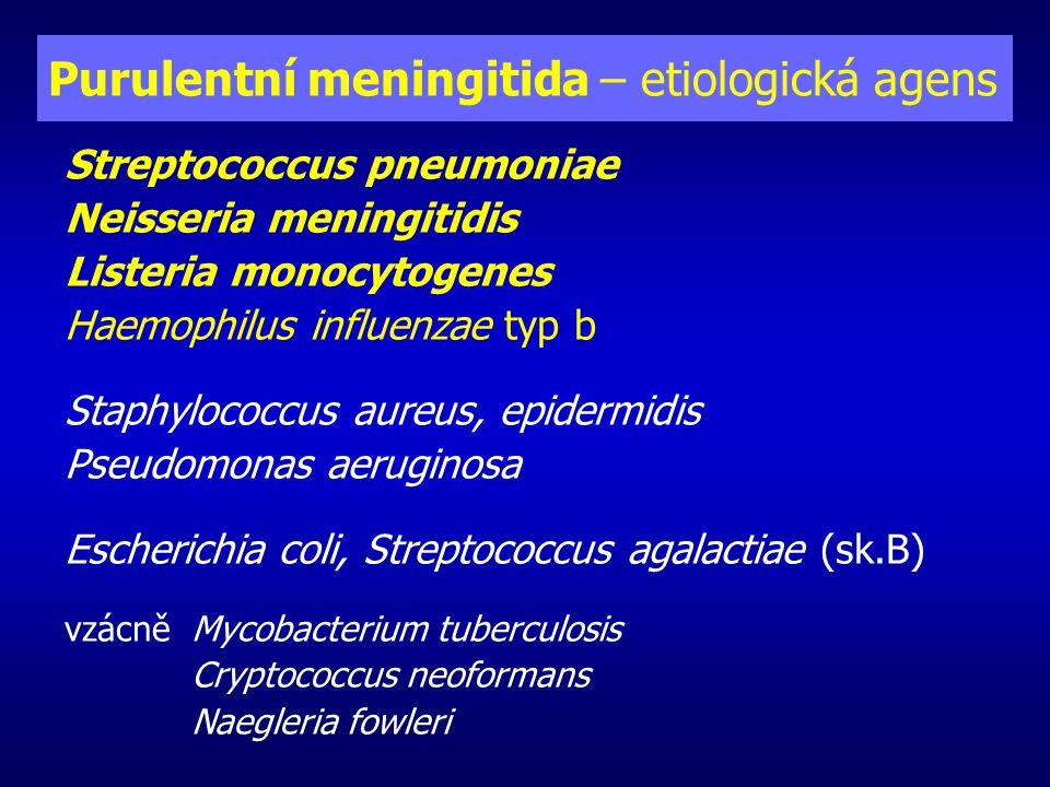 Hnisavá meningitida – etiologie