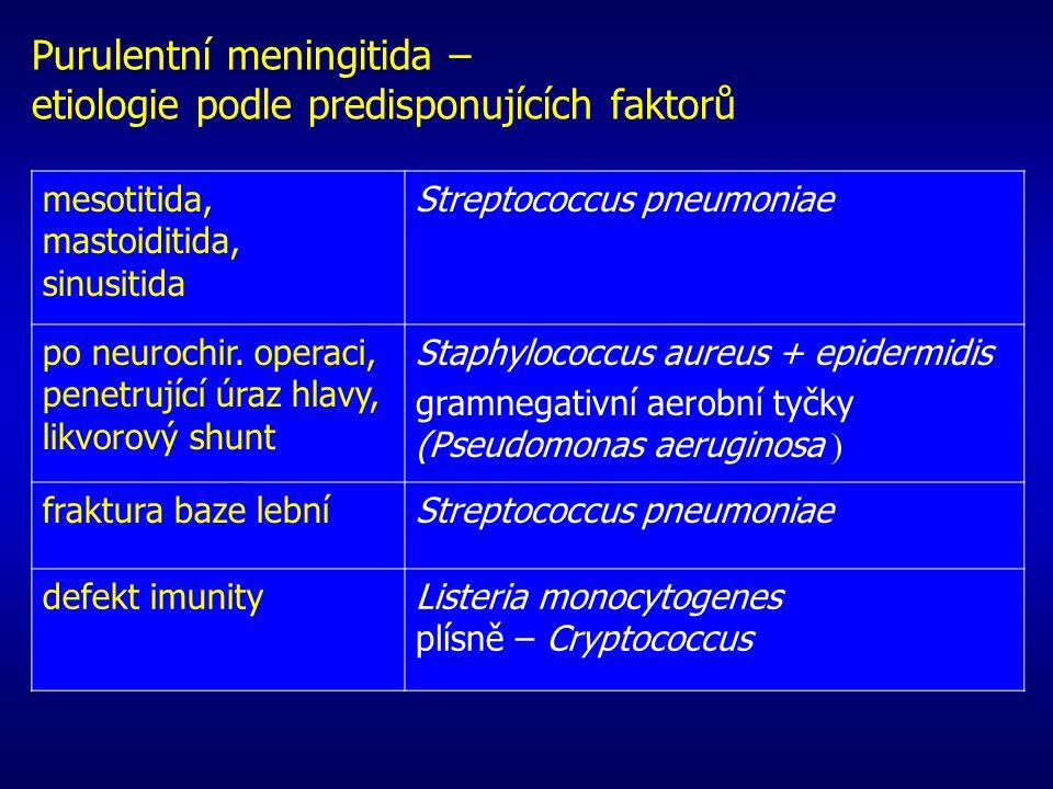 Purulentní meningitida – etiologie podle predisponujících faktorů