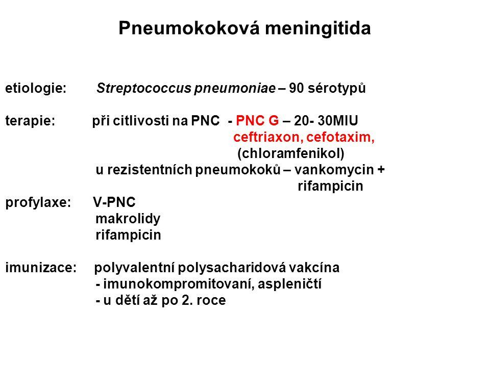 Pneumokoková meningitida