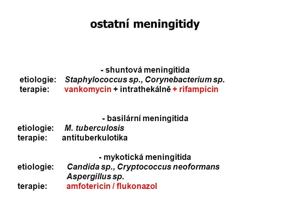 - shuntová meningitida - basilární meningitida - mykotická meningitida