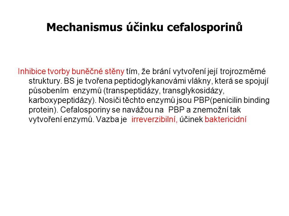 Mechanismus účinku cefalosporinů