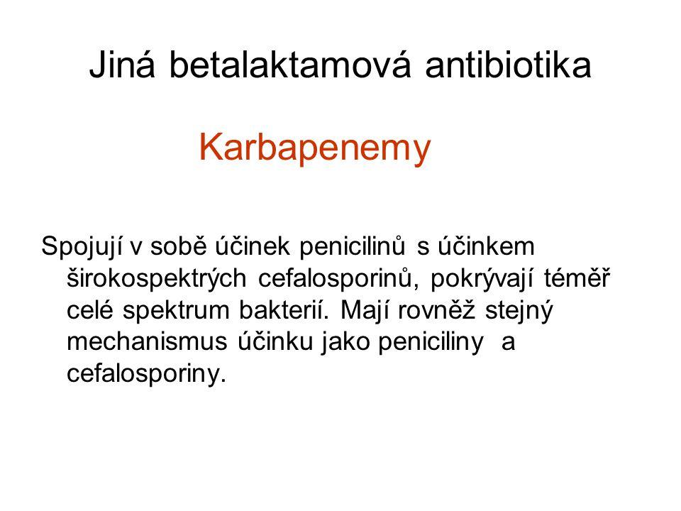Jiná betalaktamová antibiotika