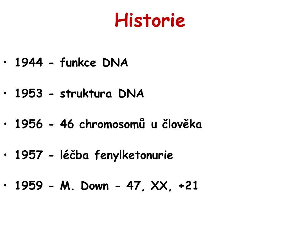 Historie 1944 - funkce DNA 1953 - struktura DNA