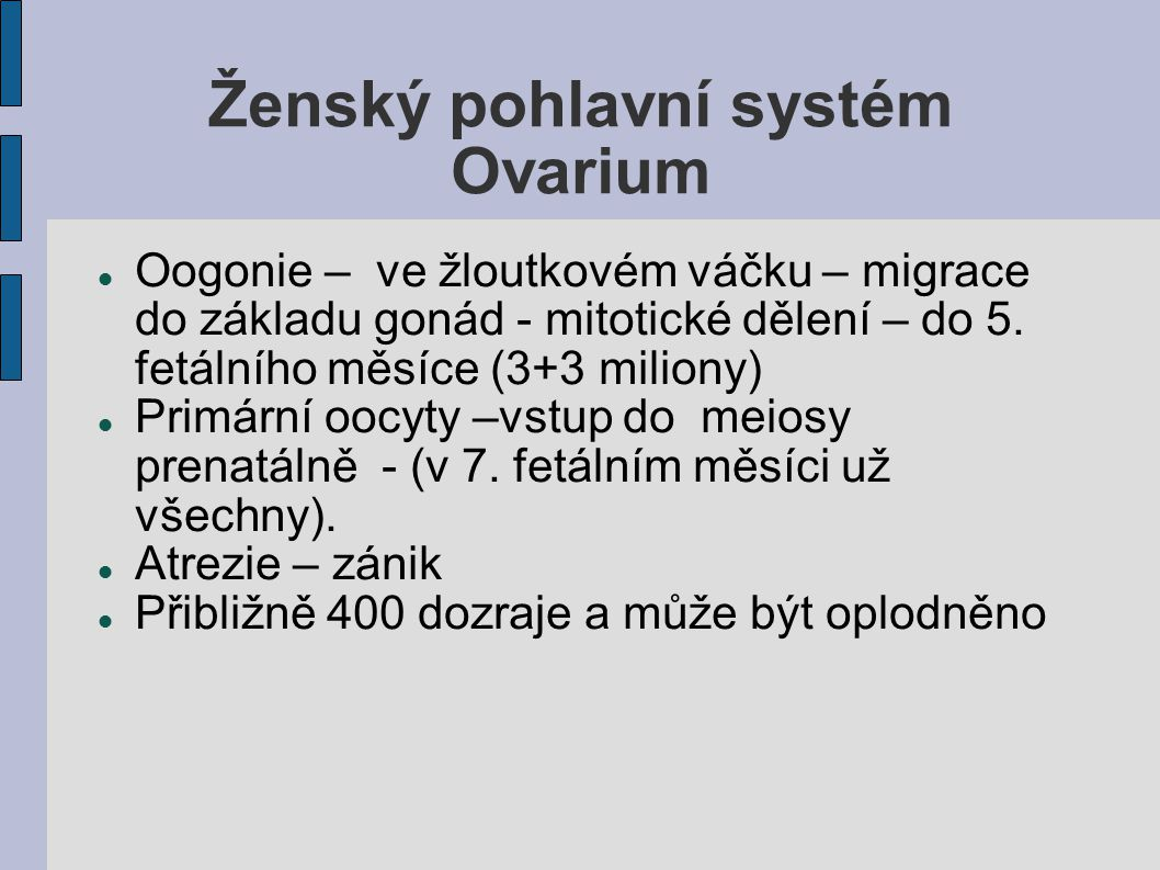 Ženský pohlavní systém Ovarium