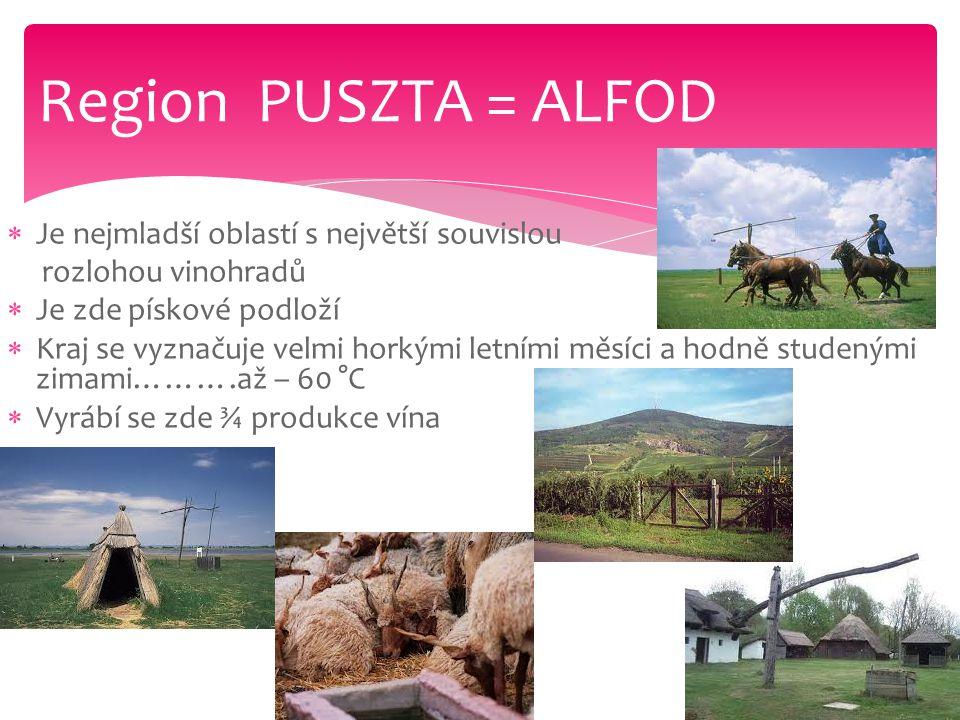 Region PUSZTA = ALFOD Je nejmladší oblastí s největší souvislou