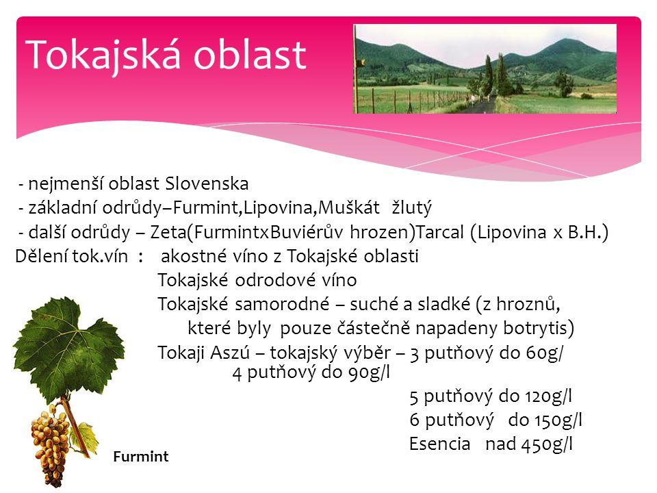 Tokajská oblast - nejmenší oblast Slovenska