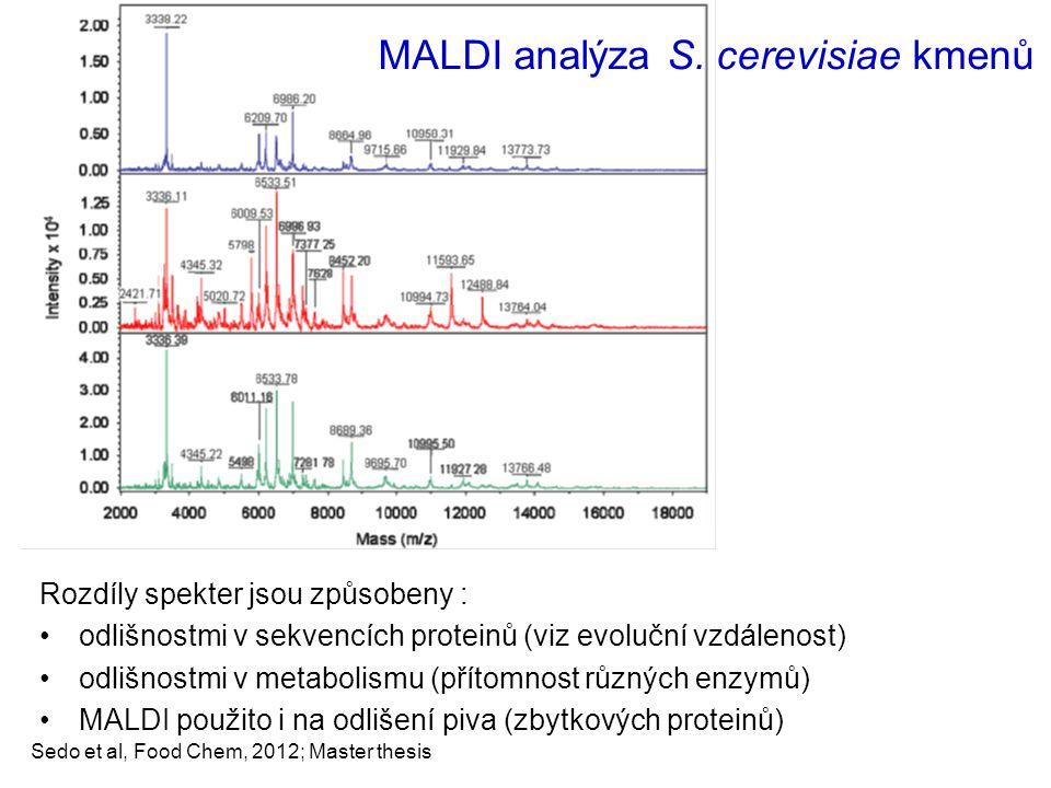 MALDI analýza S. cerevisiae kmenů