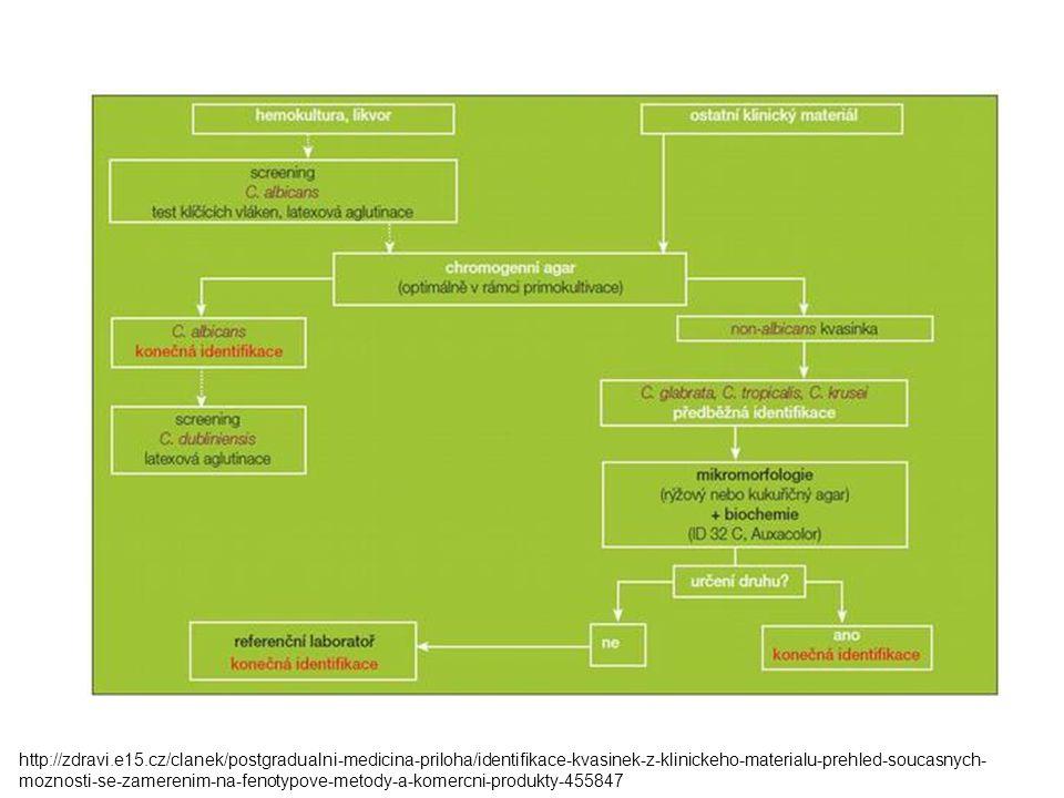 http://zdravi.e15.cz/clanek/postgradualni-medicina-priloha/identifikace-kvasinek-z-klinickeho-materialu-prehled-soucasnych-moznosti-se-zamerenim-na-fenotypove-metody-a-komercni-produkty-455847