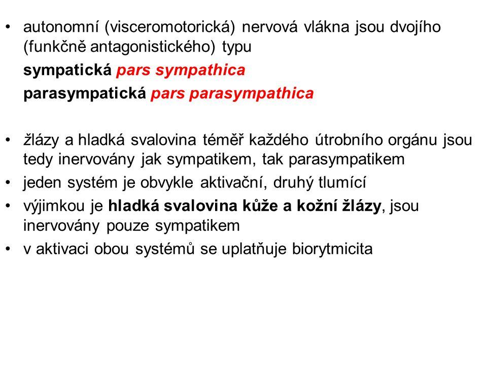 autonomní (visceromotorická) nervová vlákna jsou dvojího (funkčně antagonistického) typu