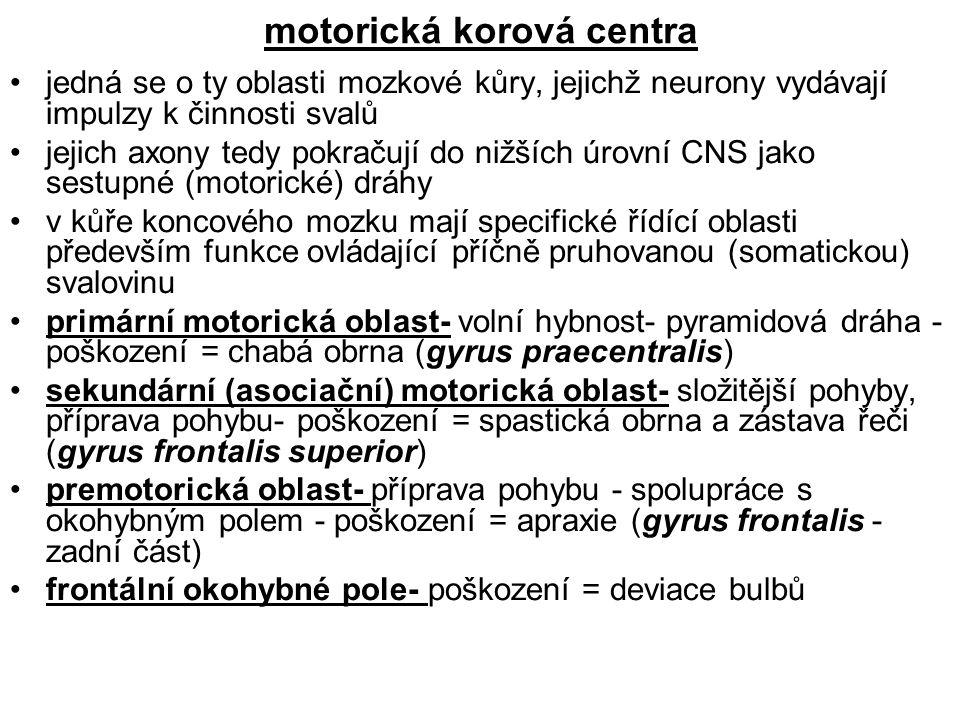 motorická korová centra
