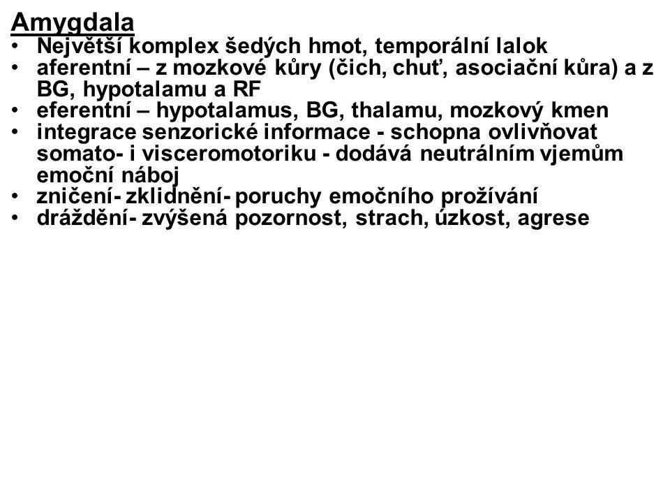 Amygdala Největší komplex šedých hmot, temporální lalok