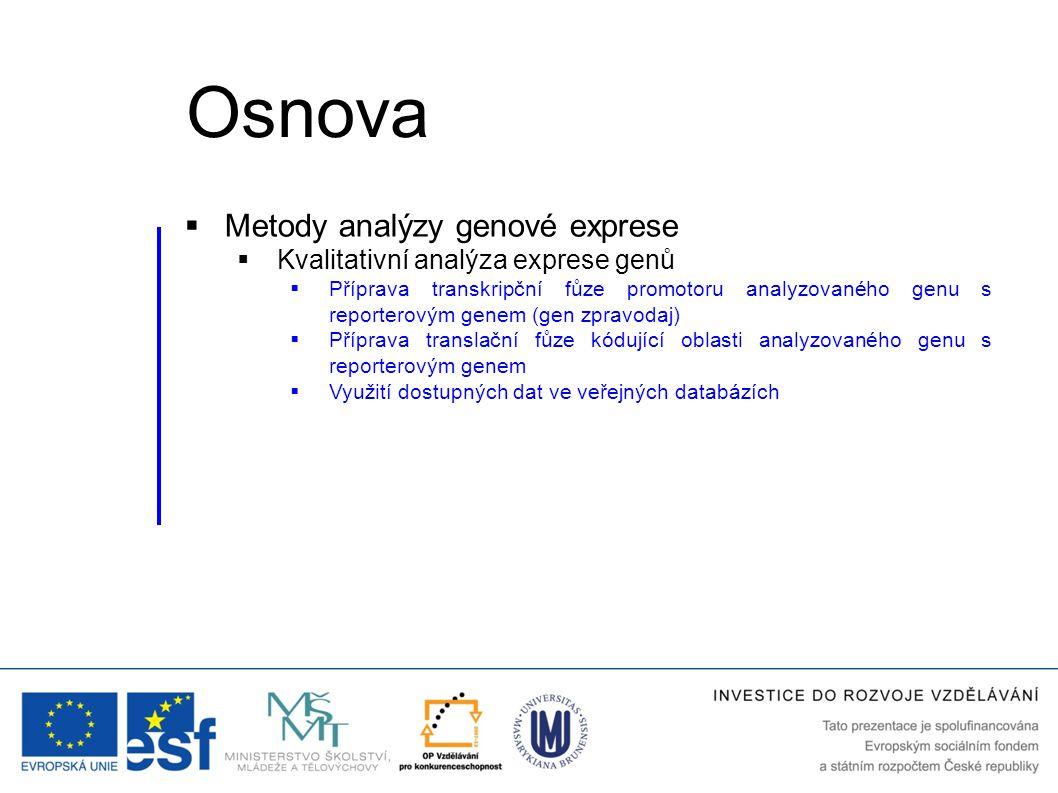 Osnova Metody analýzy genové exprese Kvalitativní analýza exprese genů
