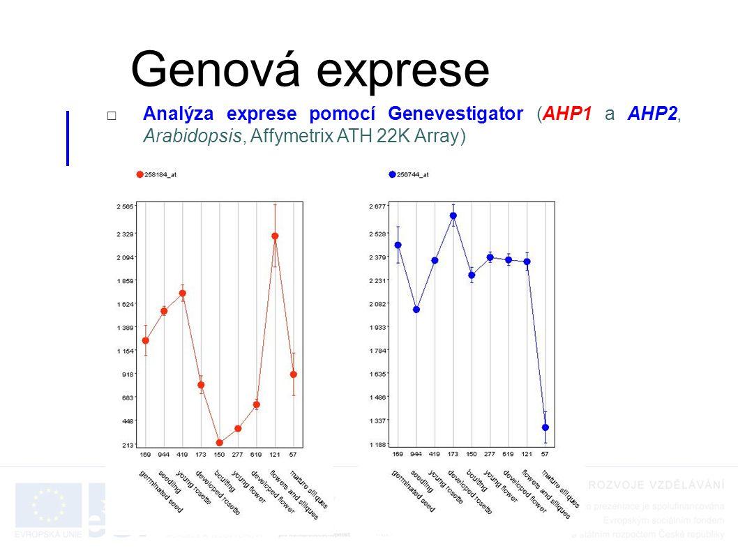 Genová exprese Analýza exprese pomocí Genevestigator (AHP1 a AHP2, Arabidopsis, Affymetrix ATH 22K Array)