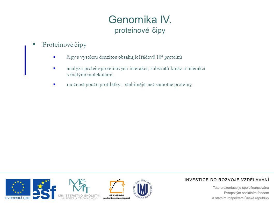 Genomika IV. proteinové čipy Proteinové čipy