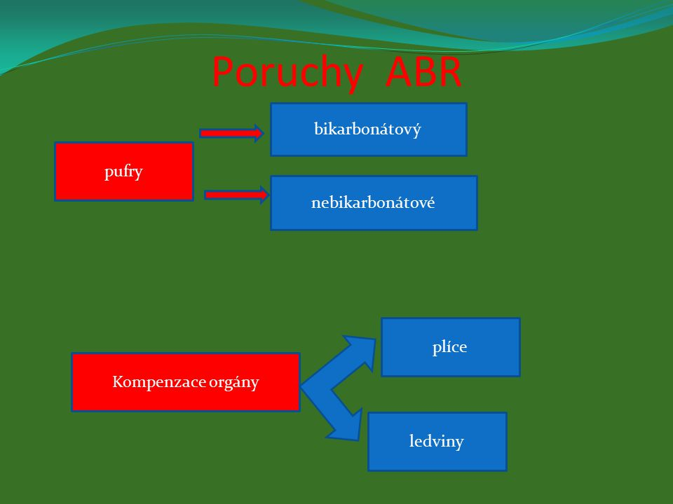 Poruchy ABR bikarbonátový pufry nebikarbonátové plíce