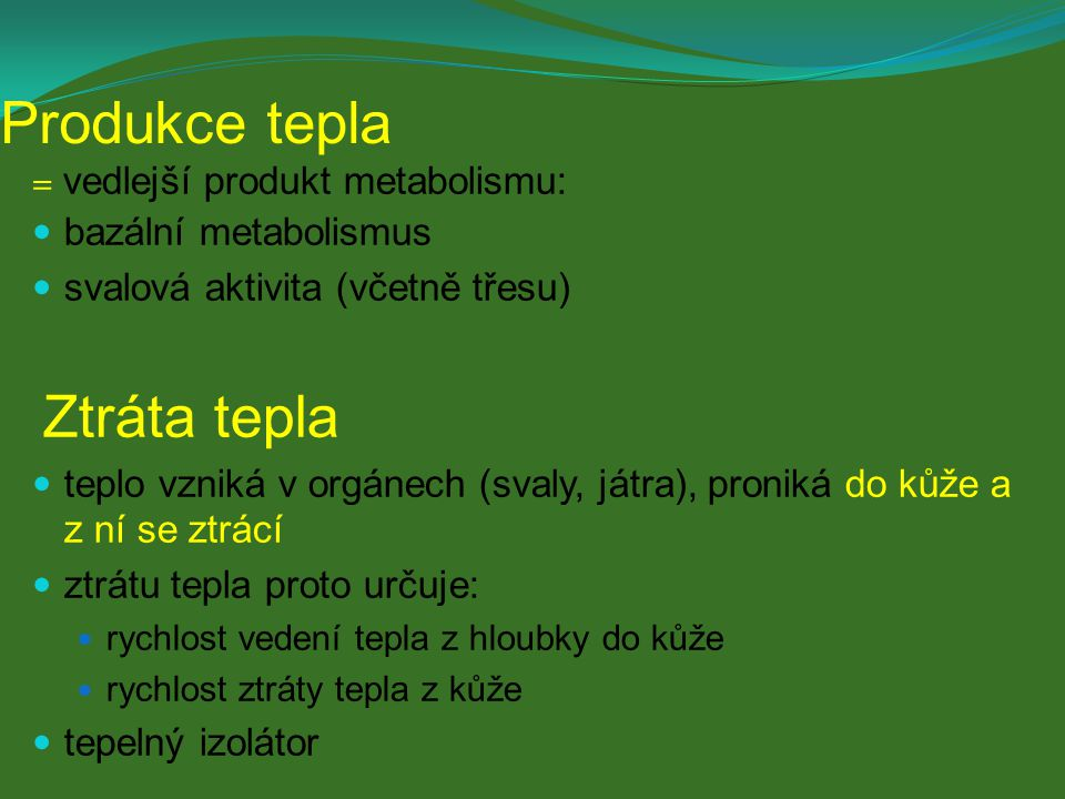 Produkce tepla = vedlejší produkt metabolismu: bazální metabolismus