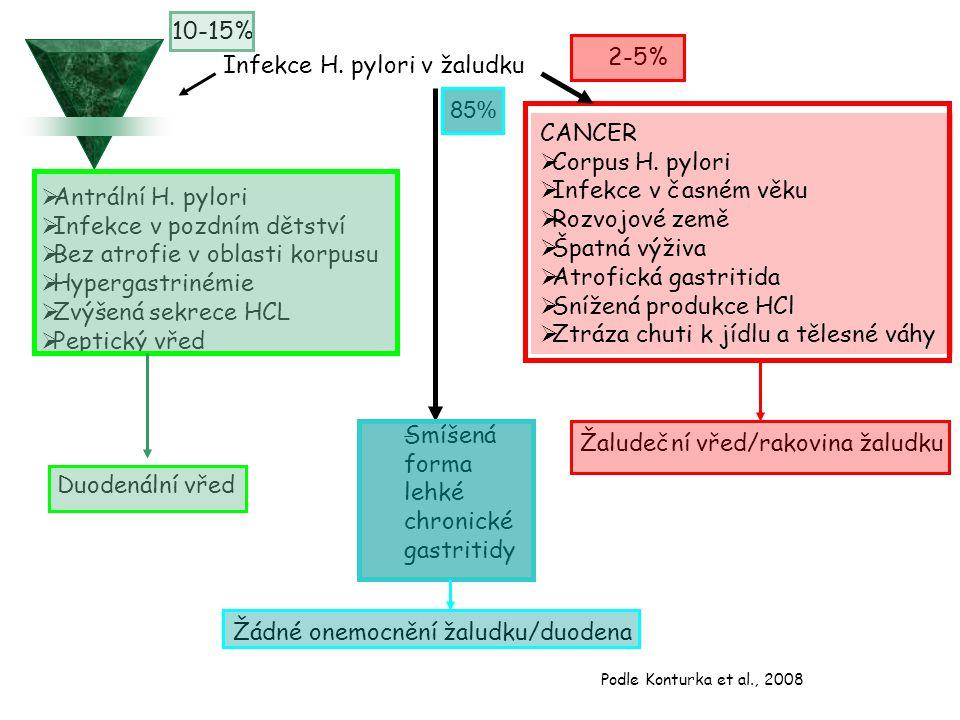 Infekce H. pylori v žaludku