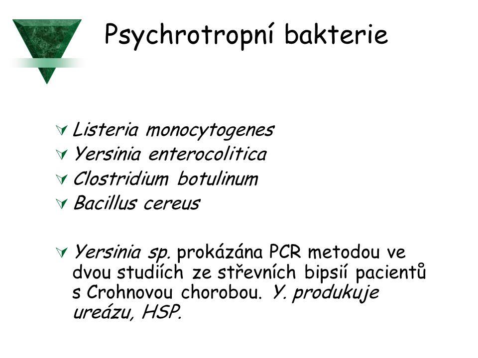 Psychrotropní bakterie